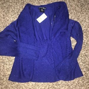 Sweaters - Large blue sparkly sweater